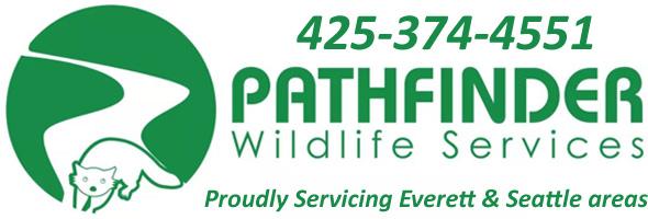 Edmonds Wildlife Removal, Pest Animal Control WA - Pathfinder