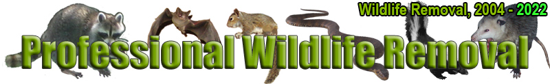 Wildlife-Removal.com
